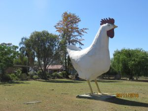 The Big Chook, Kemps Creek, Sydney